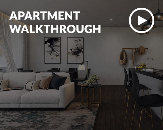 APARTMENTS WALKTHROUGH,